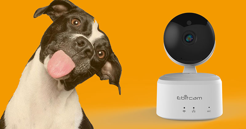 camera IP Ebitcam chính hãng tại Vuhoangtelecom