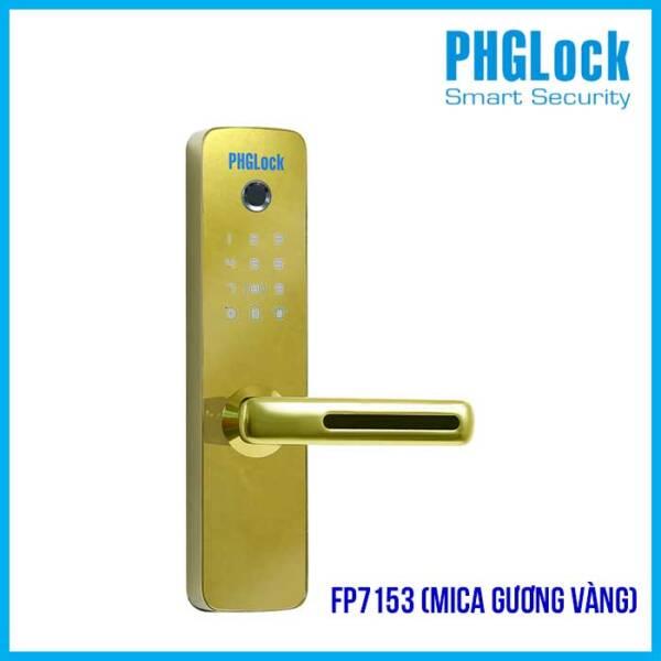 PHGLOCK FP7153G (Mica gương Vàng)