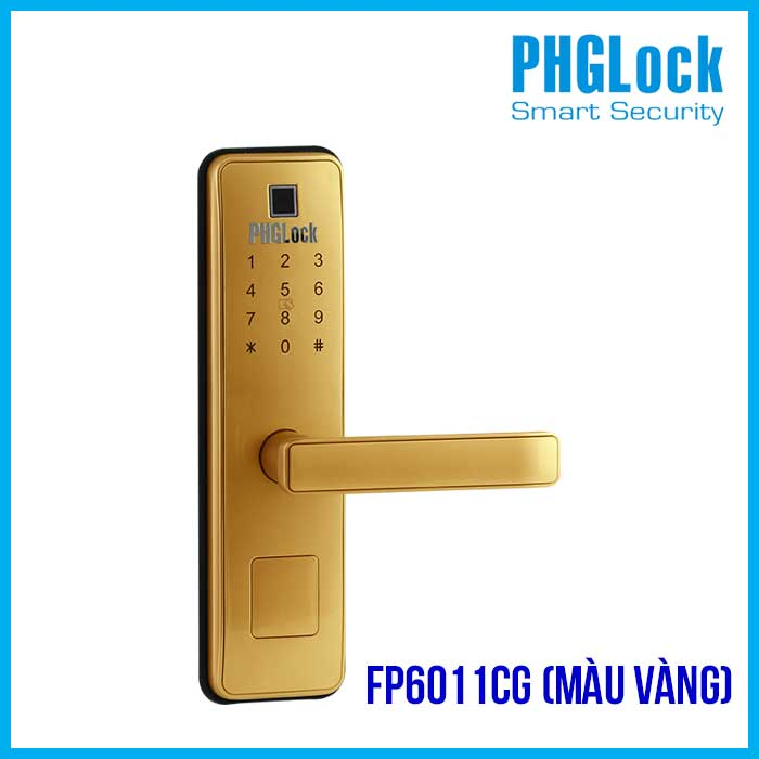 PHGLOCK FP6011CG (Màu Vàng)