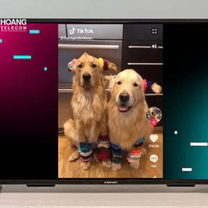 Ứng dụng TikTok đã được cập nhật trên TV Android